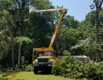 McAbee Tree Care
