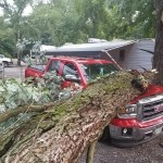 storm cleanup tree service blue ridge, ga